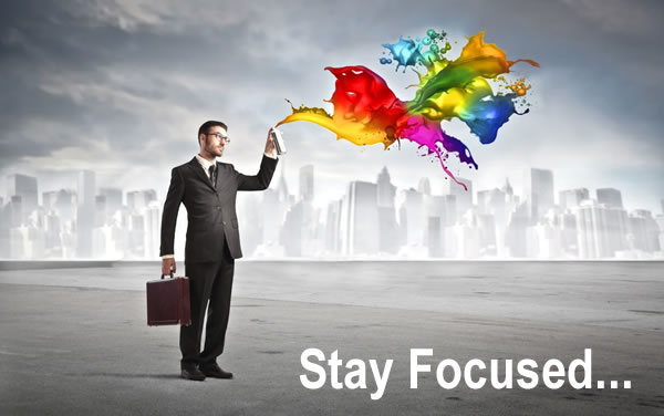 stayed focus in search marketing